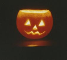 Jack O'Lantern Orange